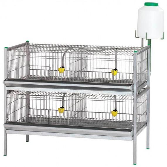 Batería exposición aves 2 cestas principio